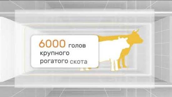 Embedded thumbnail for Что такое группа компаний «РОТА»